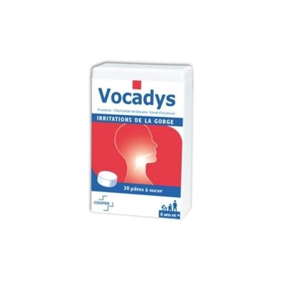 Vocadys irritations buccales boîte de 30 pâtes buccales