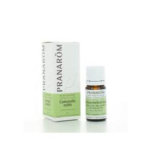 Pranarom camomille noble huile essentielle 5ml